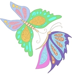 Two blue pink butterfly isolated on white vector