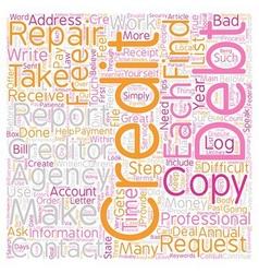 Diy credit repair tips text background wordcloud vector