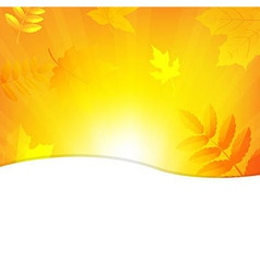 Autumn background with beams and leaves vector