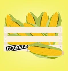 Corn in box vector image