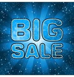Big sale message vector image