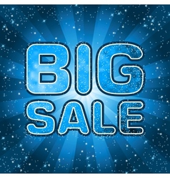 Big sale message vector image