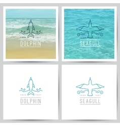 logo dolphin and seagull vector image vector image