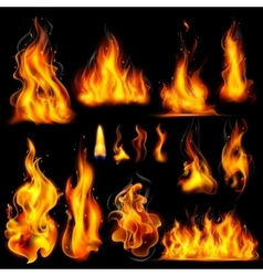Realistic Burning Fire Flame vector image