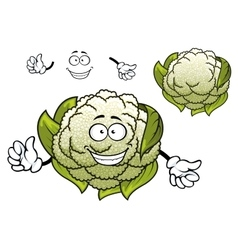 Fresh isolated cartoon cauliflower vegetable vector