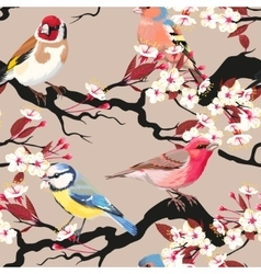 Seamless birds and blooming cherry vector