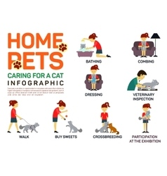 flat infographic of caring vector image