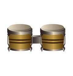 Isolated bongo drum musical instrument vector