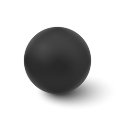 black ball isolated on white background vector image