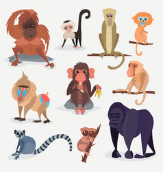 different cartoon monkey breed character animal vector image vector image