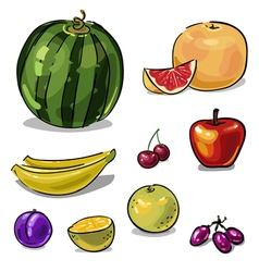 Fruit set of colored sketch brushstrokes vector image vector image