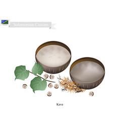 Traditional solomonian herbal beverage vector