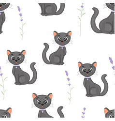 cute cats with the collar colorful seamless vector image