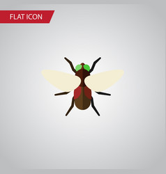 Isolated dung flat icon bluebottle element vector