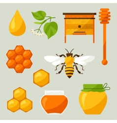 Set of honey and bee objects vector