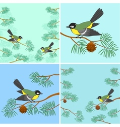 Titmouse on pine branch set vector image