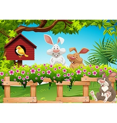 Three rabbits in the garden vector