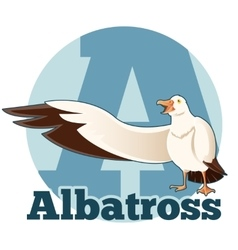 Abc cartoon albatross vector