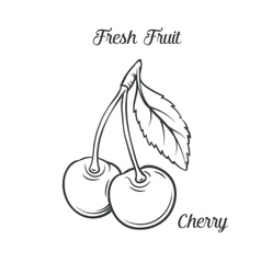 Hand drawn cherry icon vector