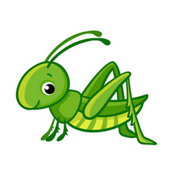 isolated cute green grasshopper vector image