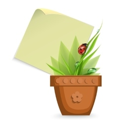 plant in the pot vector image vector image