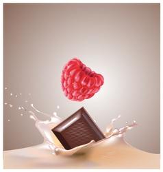 Raspberry chocolate milk vector