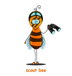 scout bee vector image