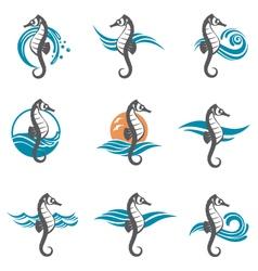 Set of sea horse vector