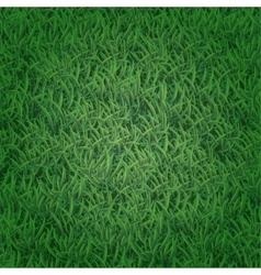 Seamless grass texture vector image