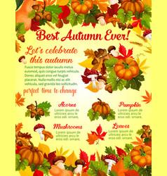 Autumn harvest celebration banner template design vector