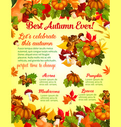 Autumn harvest celebration banner template design vector