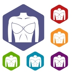 Female breast in a bra icons set vector image vector image