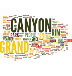 Grand canyon text background word cloud concept vector