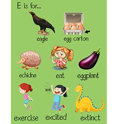 Poster letter e and different words vector