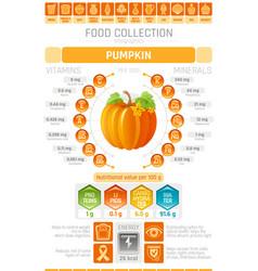 food infographics poster pumpkin vegetable vector image vector image