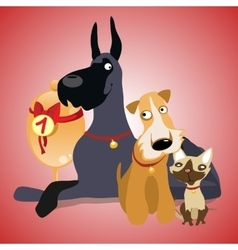 Two dogs and cat are winners crew vector