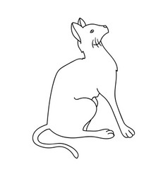 Siamese icon in outline style isolated on white vector