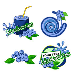 Icon blueberries fruit vector