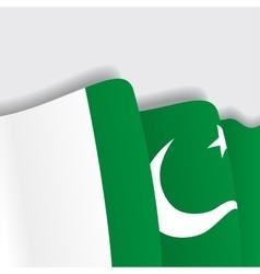 Pakistani waving flag vector