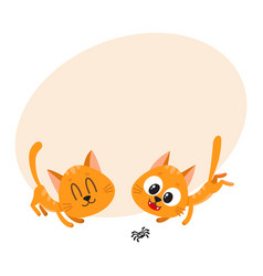 Two cute and funny red cat characters playing vector