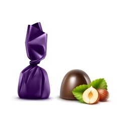 Dark chocolate candies with hazelnuts in foil vector