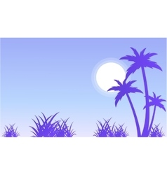 Silhouette of palm and grass scenery vector