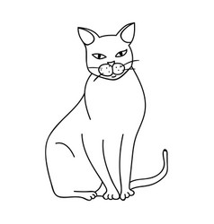 Chartreux icon in outline style isolated on white vector