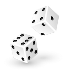 Two white dice vector