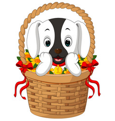 Cute dog in a basket with red ribbon vector