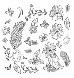 Hand drawn branches and leaves of tropical plants vector