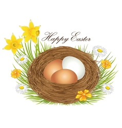 Nest with easter eggs vector