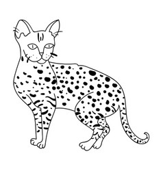 Savannah icon in outline style isolated on white vector