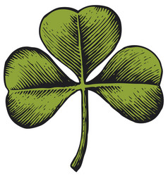 Clover with three leaf vintage engraved vector