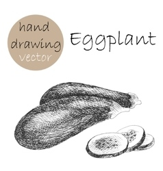 Hand drawn eggplant monochrome sketch vector